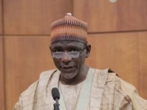 Mallam Adamu-Adamu, Minister-of Education