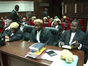 lawyers in court