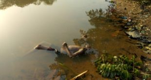 Corpse on the osun river