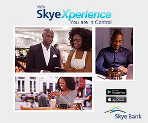 Skye New Online Advert 300X250-4