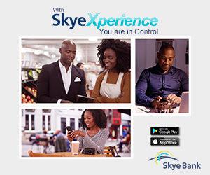 Skye New Online Advert 300X250-4